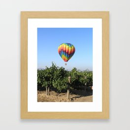 Balloon and Grapes Framed Art Print