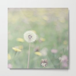 A thousand wishes Metal Print