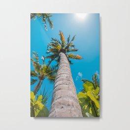 Tall Tropical Palm Trees Metal Print
