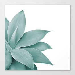 Agave Finesse #1 #tropical #decor #art #society6 Canvas Print