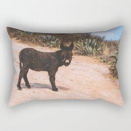 Donkey in Peru Rectangular Pillow