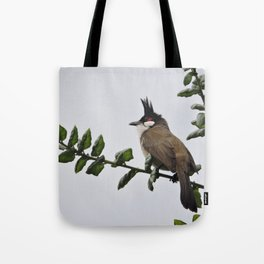 Red-Whiskered Bulbul Tote Bag