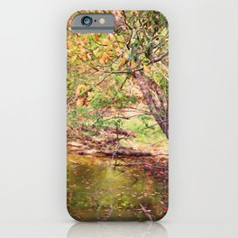 Autumn At Hickory Ridge Pond iPhone Case