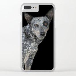 Australian Cattle Dog Clear iPhone Case