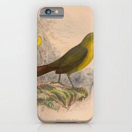 016 malia recondita4 iPhone Case