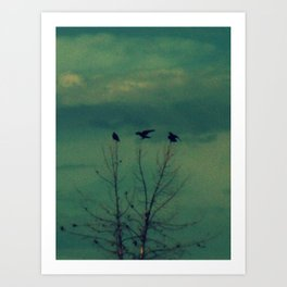 Ravens Come Gathering in a Soft Turquoise Sky Art Print