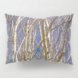BIRCH TREE DANCE Pillow Sham