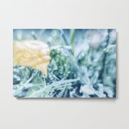 After an Autumn Rain Metal Print