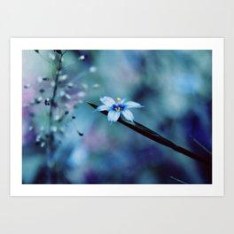 Blue on blue Flower Photography, Symphony in Blue Art Print