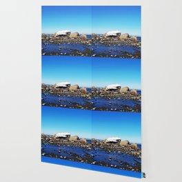 Stranded Iceberg Wallpaper