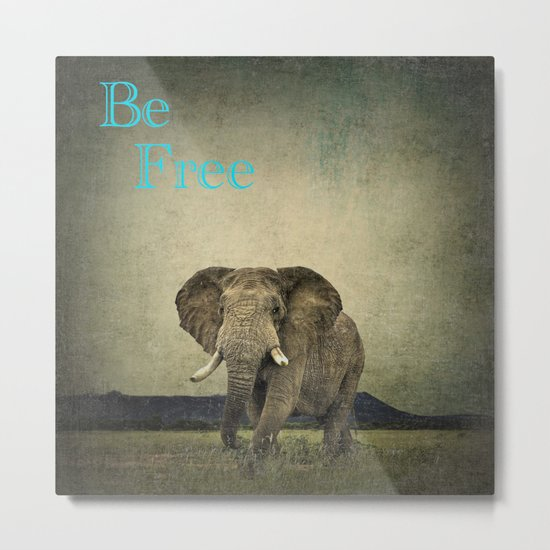 Elephant 1 Metal Print