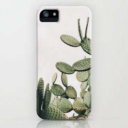 Cactus on blue sky #society6 #decor #buyart iPhone Case