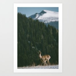 Hello spring! - Landscape and Nature Photography Art Print