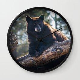 Cinnamon Bear Boss Wall Clock