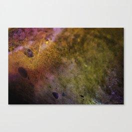 AL Photography Canvas Print