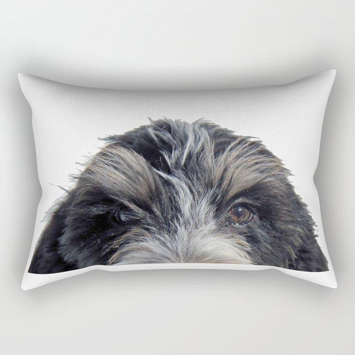 GBGV Peaking II Rectangular Pillow