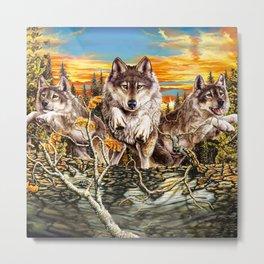 Pack of wolvesrunning Metal Print