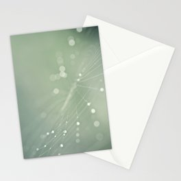 spiderweb Stationery Cards