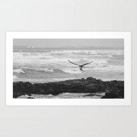 Bird of Prey Flying Over the Ocean Art Print