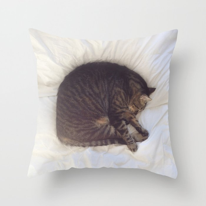 Furball Throw Pillow by richcaspianphotography