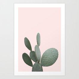 Cactus Photography | Pink | Desert-Cactus | Landscape | Tropical | Arizona Art Print