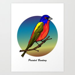 PAINTED BUNTING Art Print