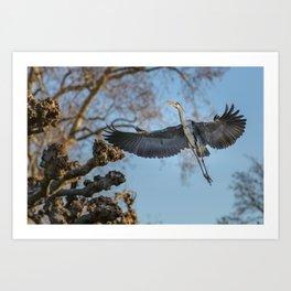 Free like the Wind Art Print