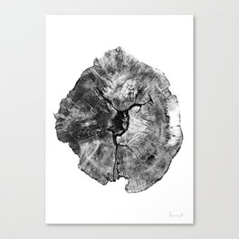 Oak log Canvas Print