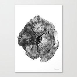 Oak log Canvas Print