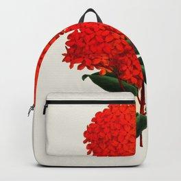 Vintage Scientific Flower Illustration Large Red Flowers Large Orange Petals Backpack