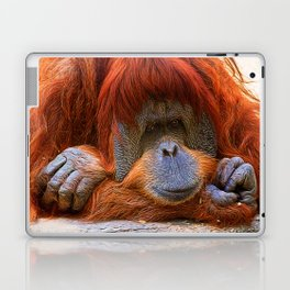 Orangutan portrait Laptop & iPad Skin