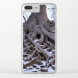 Poplar Tree in Early Spring Clear iPhone Case