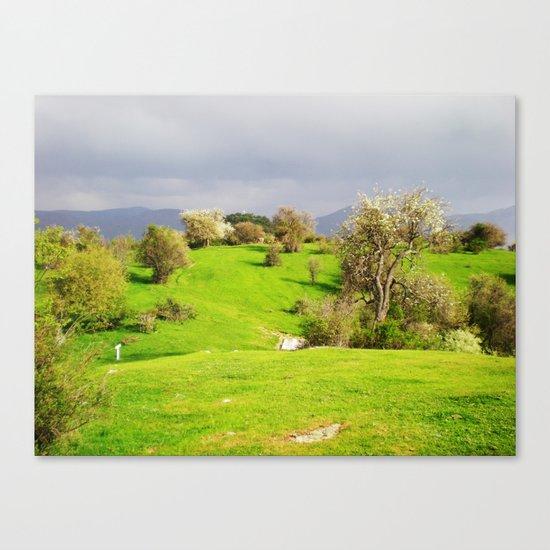 prespes.lakes.II.greece Canvas Print