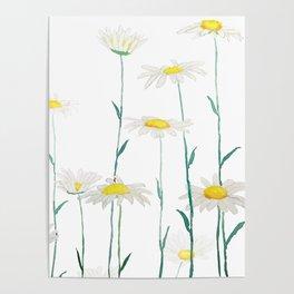 white daisy watercolor horizontal Poster
