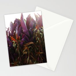 BEETROOT QUEEN Stationery Cards