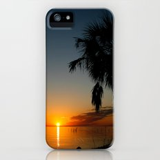 Palm Tree Sunset iPhone (5, 5s) Slim Case