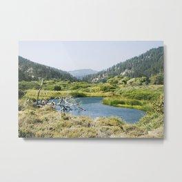 Pond off Highway 1 Metal Print