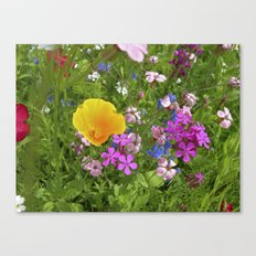 wildflowers meadow II Canvas Print