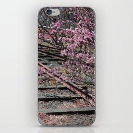 High Line iPhone Skin