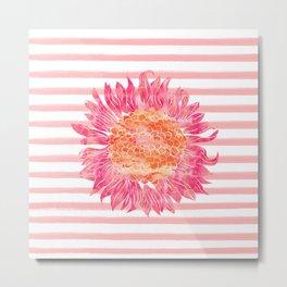 Pink and Orange Sunflower Metal Print