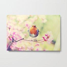 Chubby Bird Metal Print