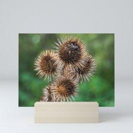 Autumn Burdock Mini Art Print