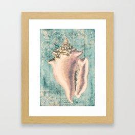 Shabby Shell3 Framed Art Print