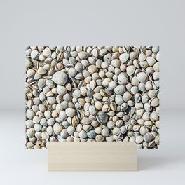 Seashells in the Regional Natural Park of Camargue Mini Art Print