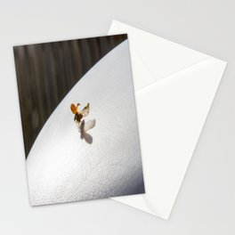 Ladybug In Flight Stationery Cards