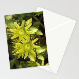Blooming Green Stationery Cards