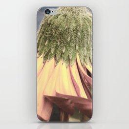 Repose iPhone Skin