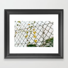 HEART SHAPED LEAVES Framed Art Print
