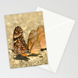 butterfly (Dione juno and Dryas julia) Stationery Cards