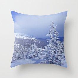 Winter day 27 Throw Pillow
